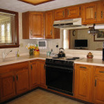 Meet the Parents (and their amazing kitchen remodel)