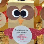 Cute Owl Valentines