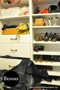 Master Closet Progress and Plans