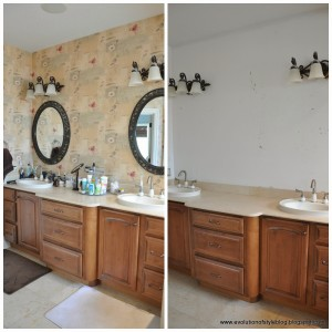 Master Bath Progress, Paint + Ideas