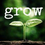 2017: Grow