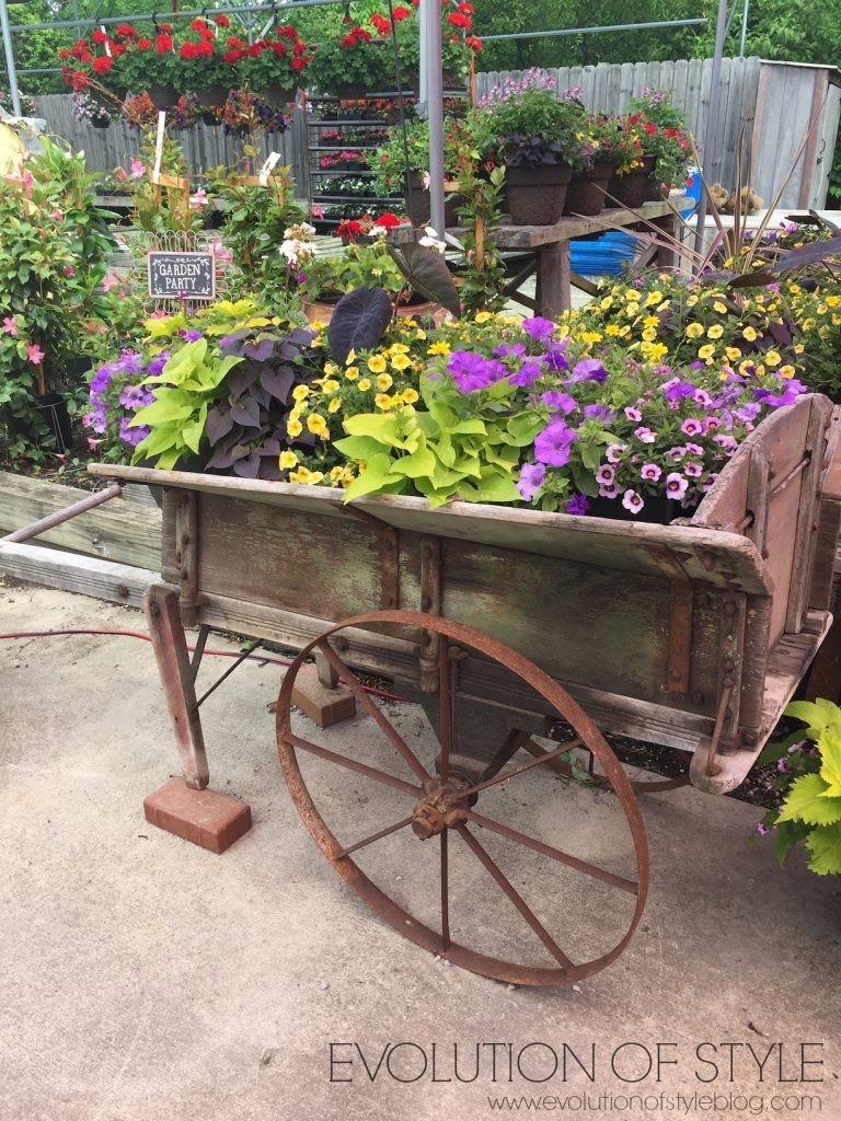 Outdoor Flower Ideas