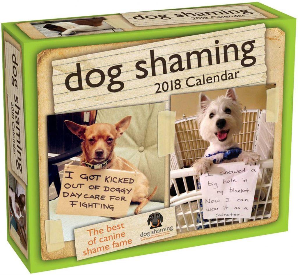 Dog Shaming Daily Calendar
